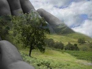 https://colunadosardinhaecologia.files.wordpress.com/2010/09/ecologia.jpg?w=300